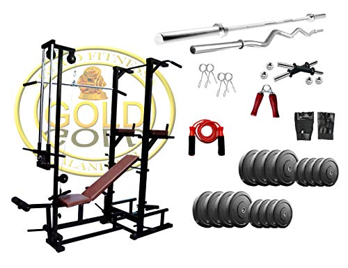 Gold Fitness Tower with Push up DIPS and ABS Workout